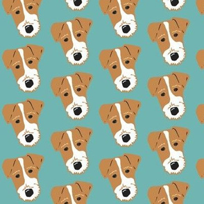 Wire Fox Terrier - Jack Russell Terrier -  tan and aqua