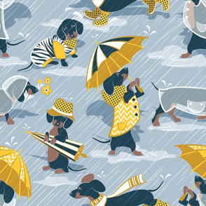 Ready For a Rainy Walk // normal scale // pastel blue background navy blue dachshunds dogs with yellow and transparent rain coats and umbrellas