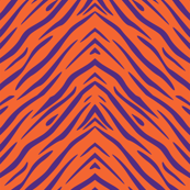 Tiger Stripes Purple and Orange Animal Print Champs on Fading or Gradient Background