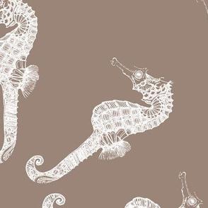 Sandy Seahorse Circles