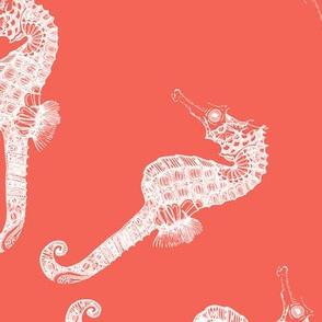 Coral Seahorse Merry Go Round