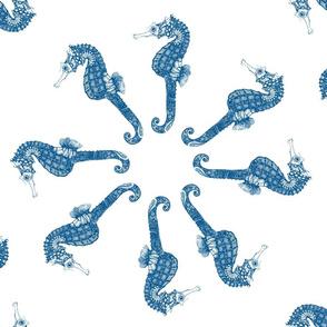 Navy Seahorse Circles