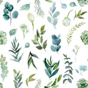 Eucalyptus Greenery // White