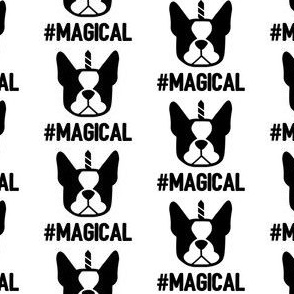 Boston Terriers are magical little creature - thus the unicorn horn