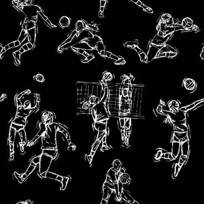 Volley ball White on Black