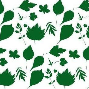 Green Leaf Outlines