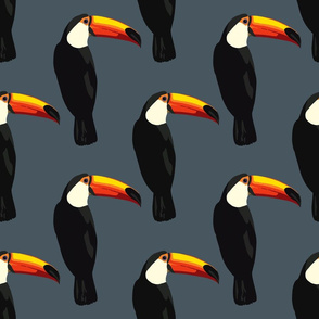 Talulah the toucan in dark blue