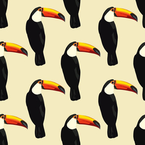 Talulah the toucan in cream