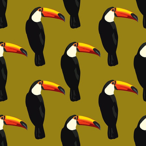 Talulah the toucan in olive green