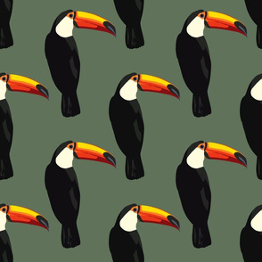 Talulah the toucan in spruce green