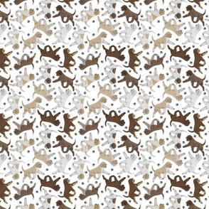 Trotting Lagotto Romagnolo and paw prints - tiny white