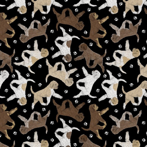 Trotting Lagotto Romagnolo and paw prints - black