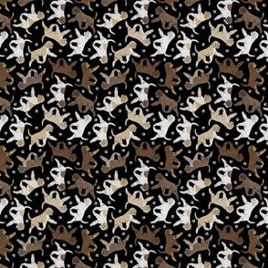 Trotting Lagotto Romagnolo and paw prints - tiny black