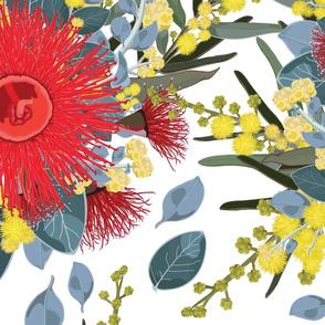 Australian Wildflowers No. 5