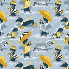 Ready For a Rainy Walk // tiny scale // pastel blue background navy blue dachshunds dogs with yellow and transparent rain coats