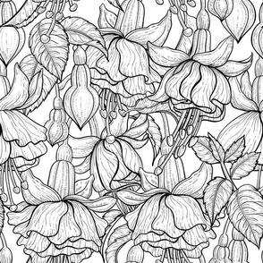 Fuchsia b&w