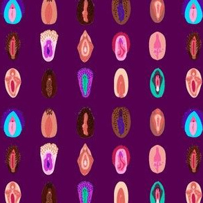 variety of vulvas-purple