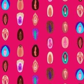 variety of vulvas- pink