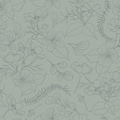 Cosmos Flowers // Outlines // sage