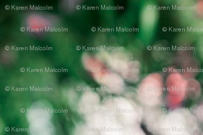 Florallions-2_preview