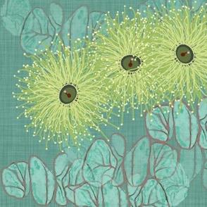 Eucalyptus Lullaby