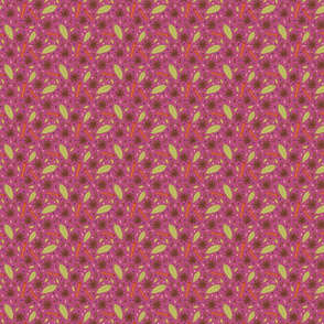 Garam Masala on Pink