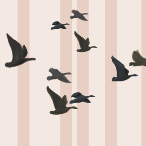 Birds in Flight: Pink