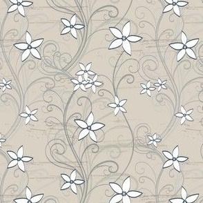 Australian Waxflower Crowea White