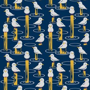 Halfsized Gulls