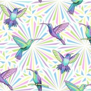 hummingbirds white