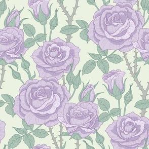 Roses violet
