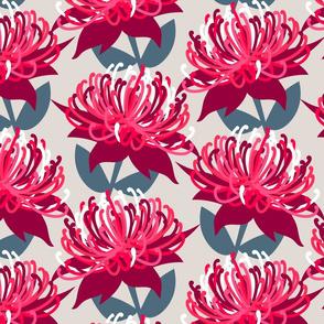 Waratah Australian Flora Pink Grey