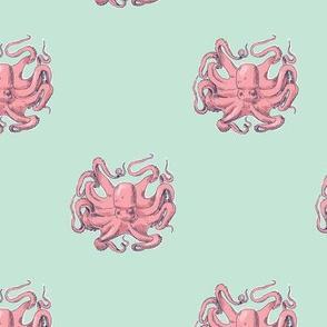 Pink Octopus on Mint