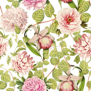 "18"" Pierre-Joseph-Redoute - Historic pastel Roses and Peonies fabric - redoute roses fabric - Mix and Match - on white"