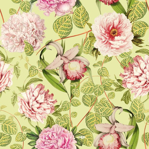 "18"" Pierre-Joseph-Redouté - Historic pastel Roses and Peonies fabric - redoute roses fabric - Mix and Match - on green"