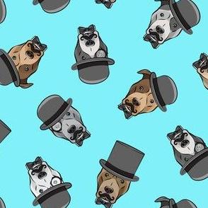 Dapper dogs - pit bull - top hat mustache - blue - LAD19