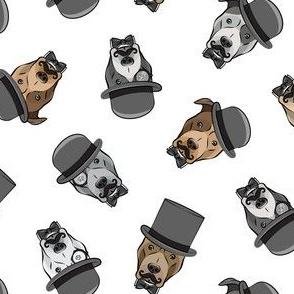 Dapper dogs - pit bull - top hat mustache - white - LAD19