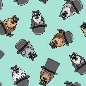 Dapper dogs - pit bull - top hat mustache - aqua - LAD19