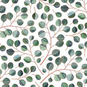 Simple Silver Dollar Eucalyptus Leaves on White - small