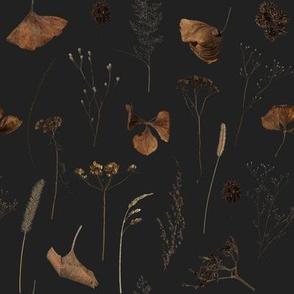 Dried Flowers // Mine Charcoal