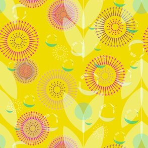 yellow Australian morning pew