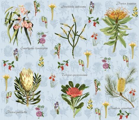 Raustralian_flora_w_floral_bkgd_2_blue_liten_protea_contest252348preview