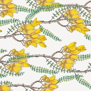 Branches of Kowhai - Rotated