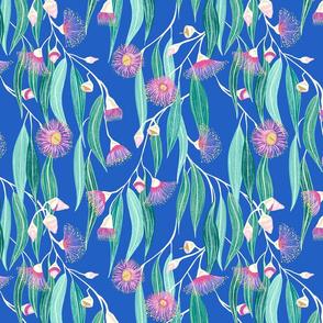 eucalyptus - bright blue background