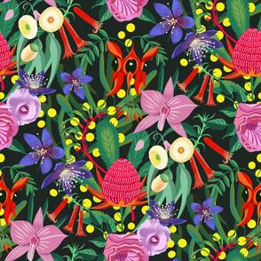 Australian florals