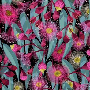 Eucalyptus Bloom black background