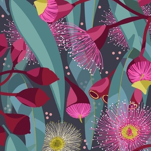 Eucalyptus Bloom gray background