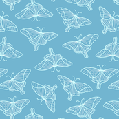 fluttering butters