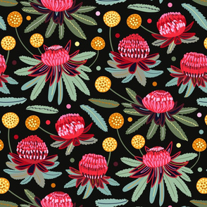 Waratahs and Craspedia (Large Version)