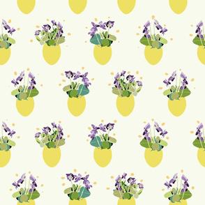 white_lemon_single_viola_egg_01_seaml_stock